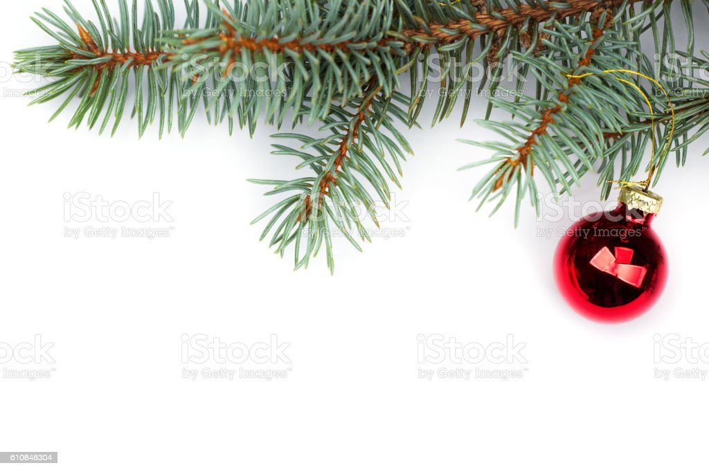 isolated Fir branches with Christmas tree balls stock photo