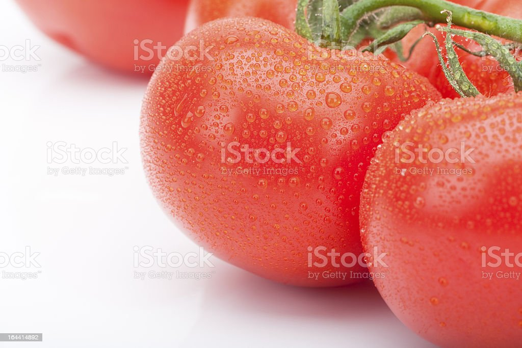 Isolated fresh tomatoes royalty-free stock photo