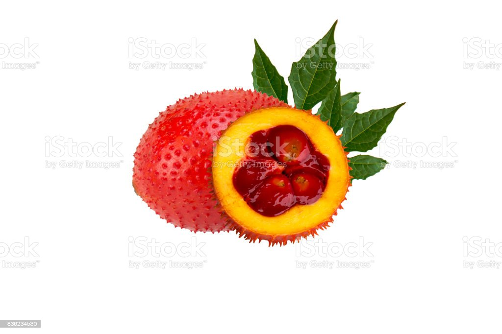 isolated gac fruit or momordica or sweet gourd stock photo