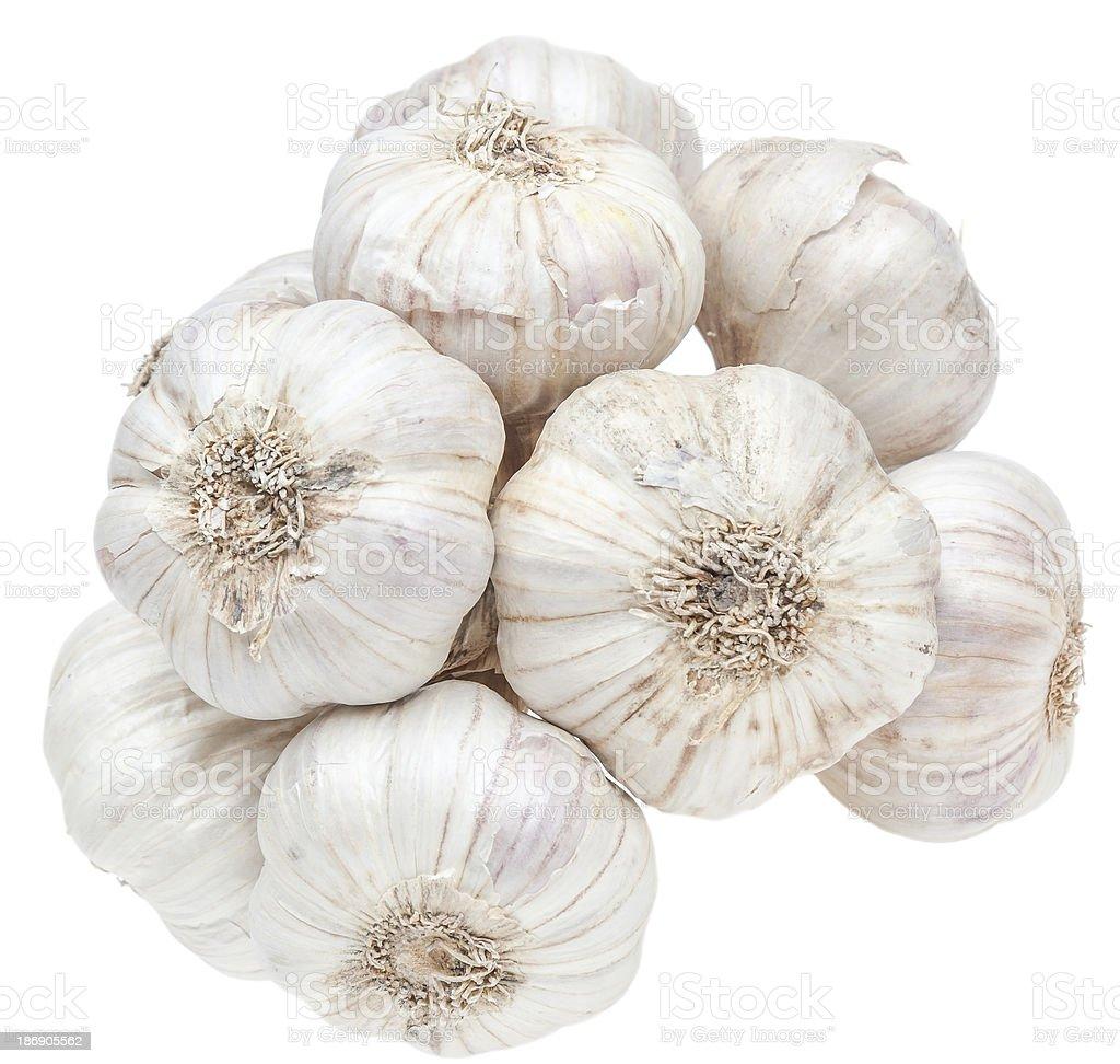 Isolated garlic bunch on white background royalty-free stock photo