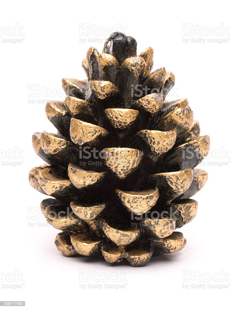 Isolated Golden Pine cone on white stock photo