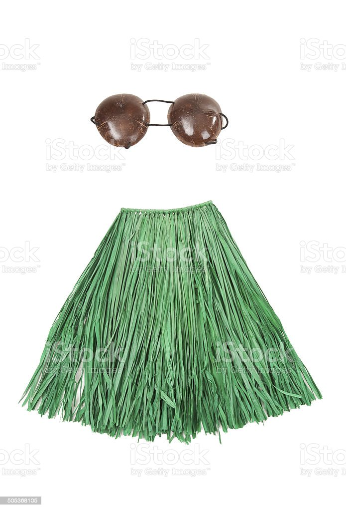 Isolated Grass Skirt And Coconut Bra stock photo