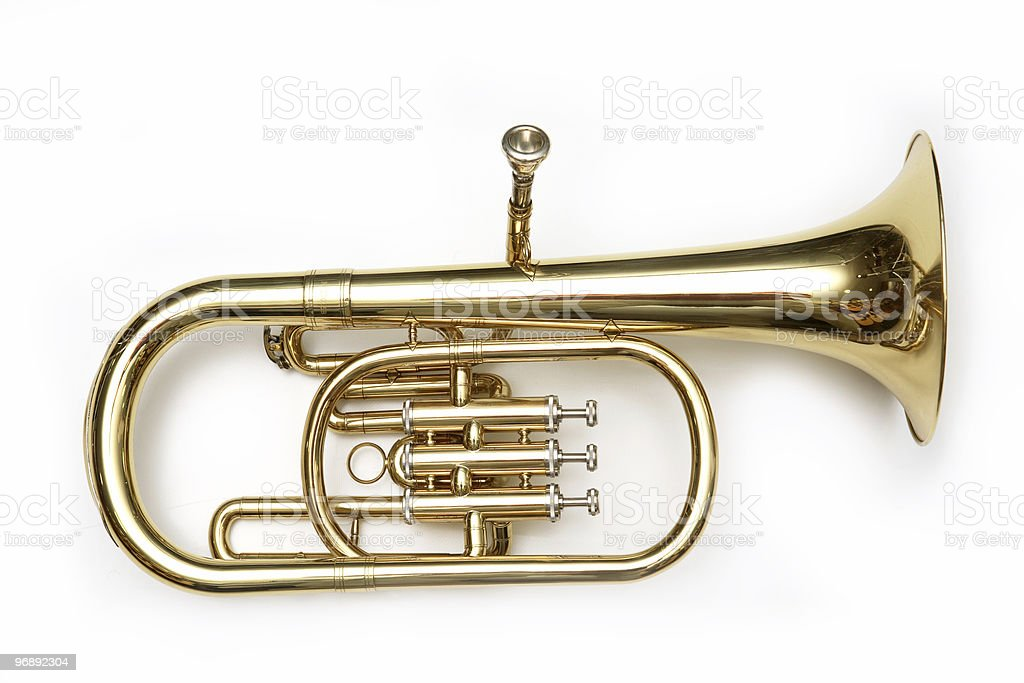 Isolated image of a gold-toned cornet stock photo