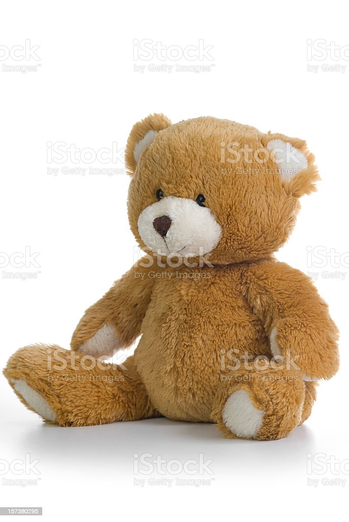 Isolated image of a teddy bear on a white background royalty-free stock photo