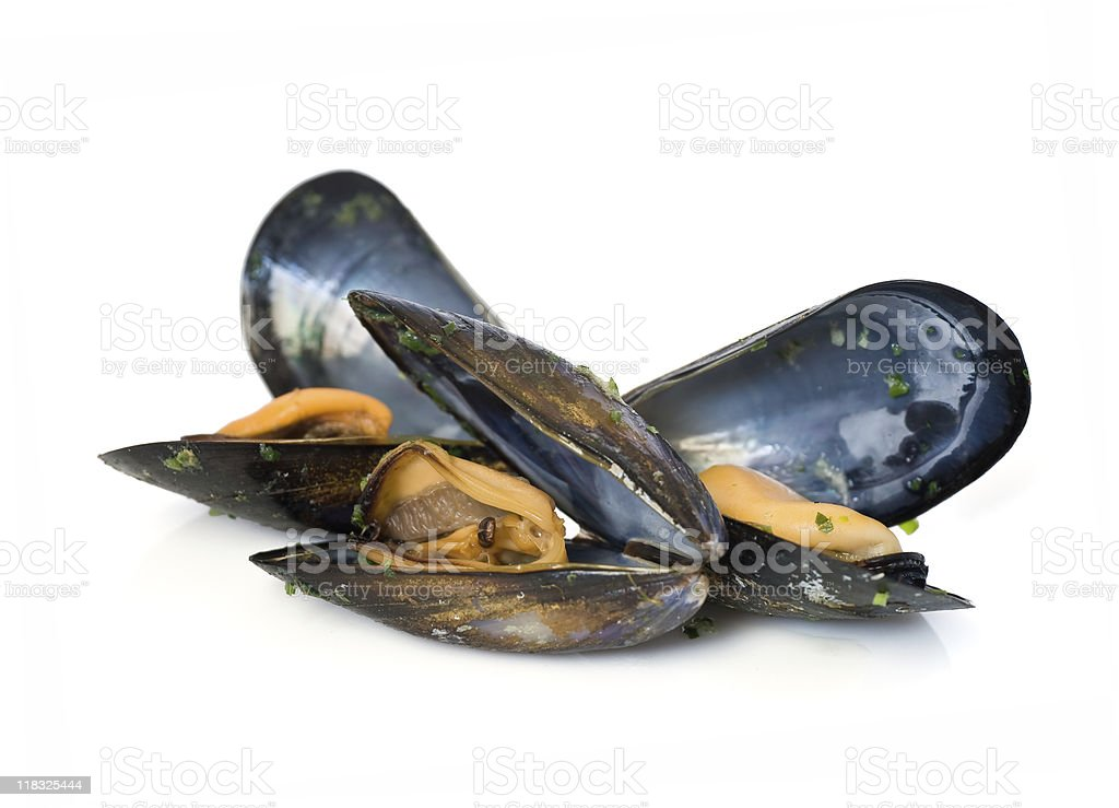 Isolated image of mussels in the shell stock photo