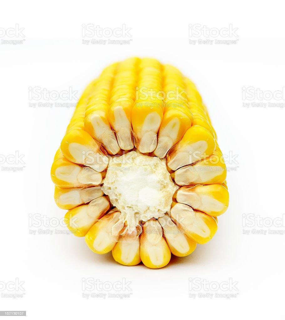 isolated maize on white background stock photo