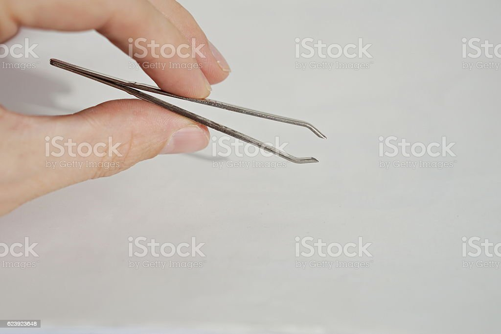 Isolated male hand holding silver tweezers (cosmetic pincer ) stock photo