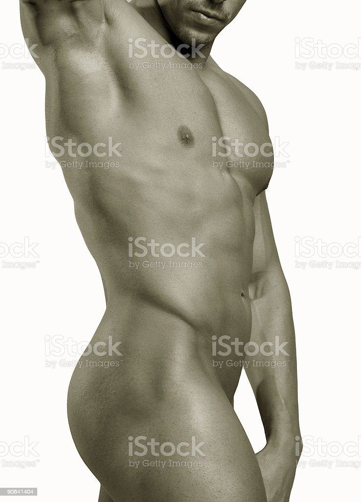 isolated male torso royalty-free stock photo