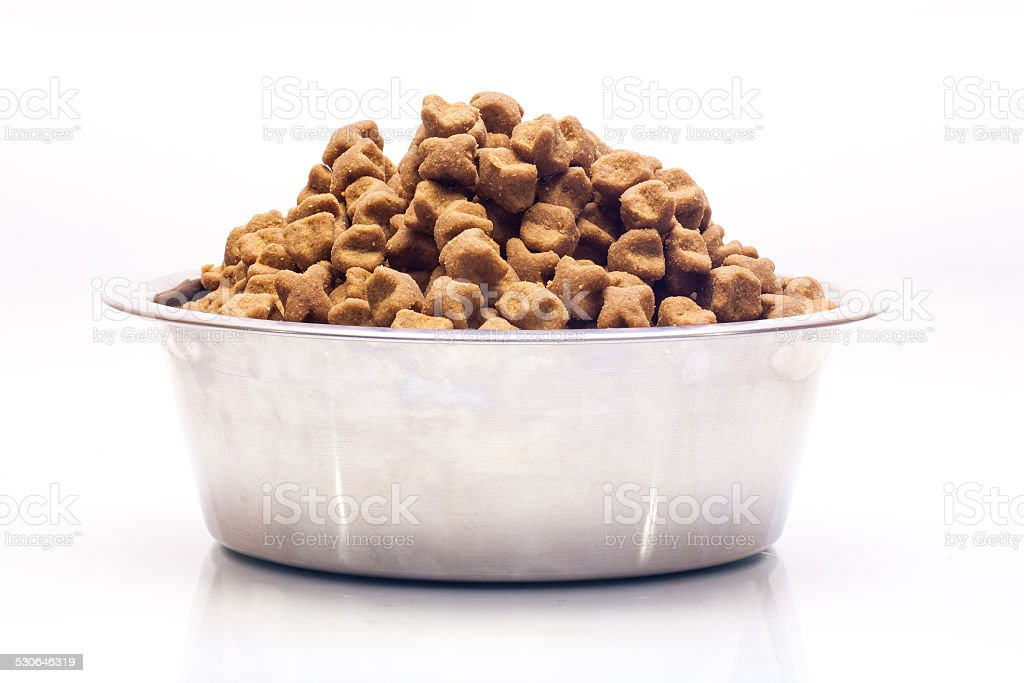 Isolated metal bowl with dog dry food. stock photo