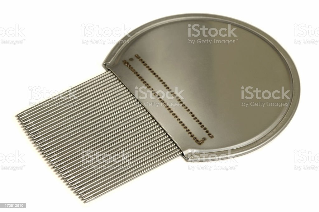 Isolated Nit ( Head Louse ) Comb stock photo