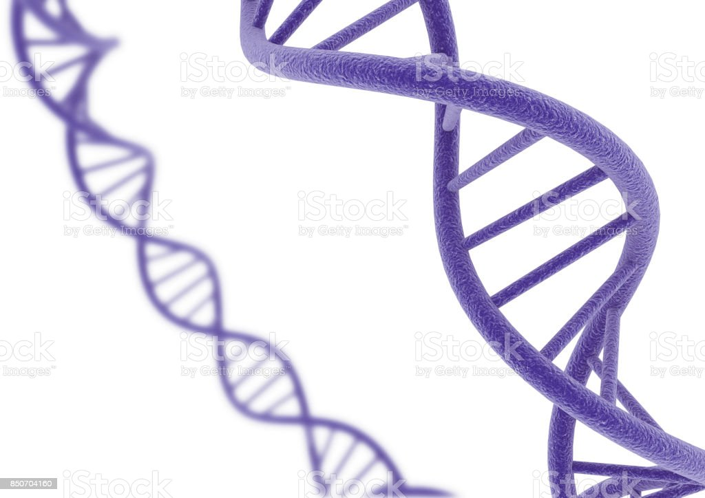 DNA isolated on a white background. stock photo