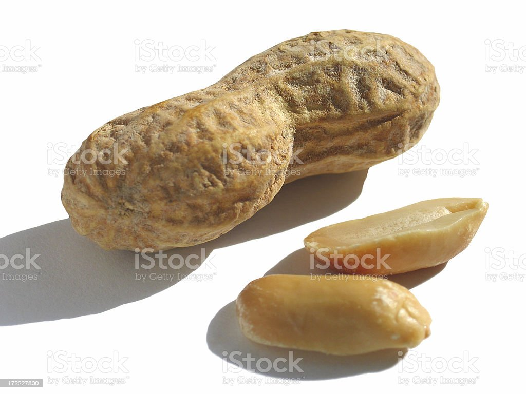 Isolated Peanuts stock photo