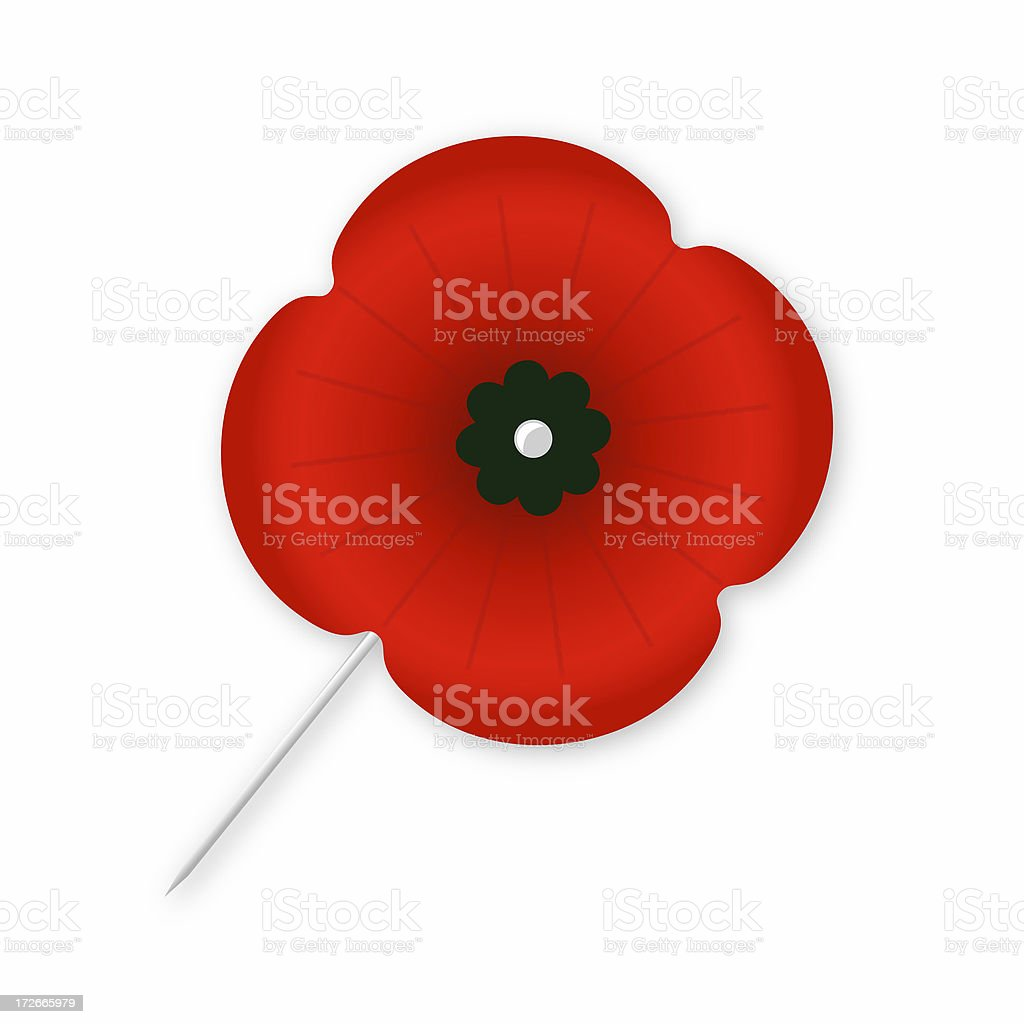 Isolated Poppy with Green Centre stock photo