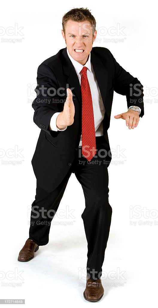 Isolated Portraits-Businessman Karate Stance royalty-free stock photo