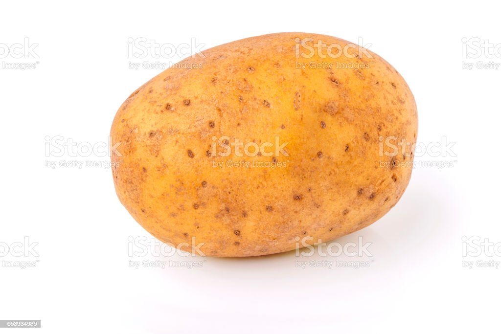 isolated potato tuber stock photo