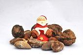 Isolated Santa Claus and hard shell seeds