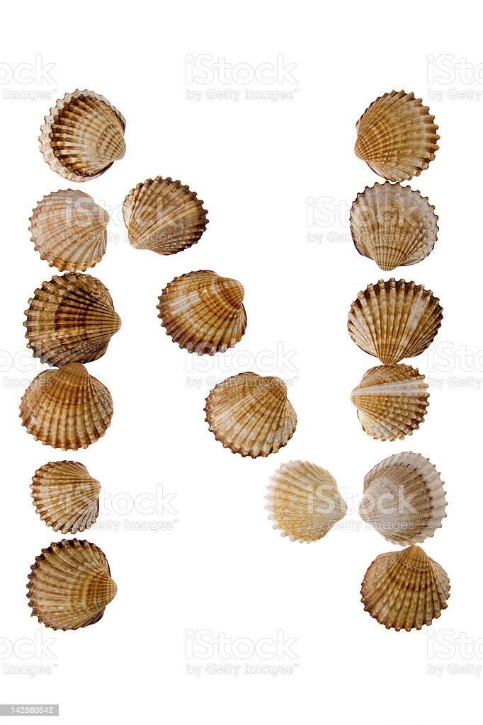 isolated shell letter N royalty-free stock photo