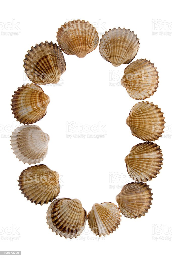 isolated shell letter O royalty-free stock photo