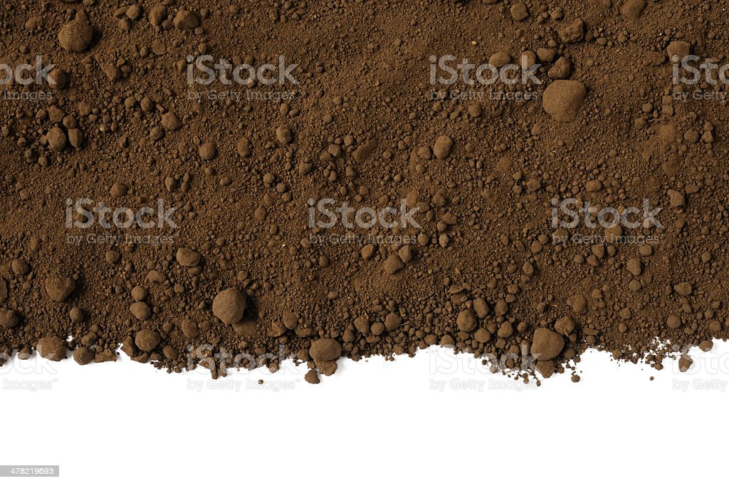 Isolated shot of humus soil border on white background stock photo