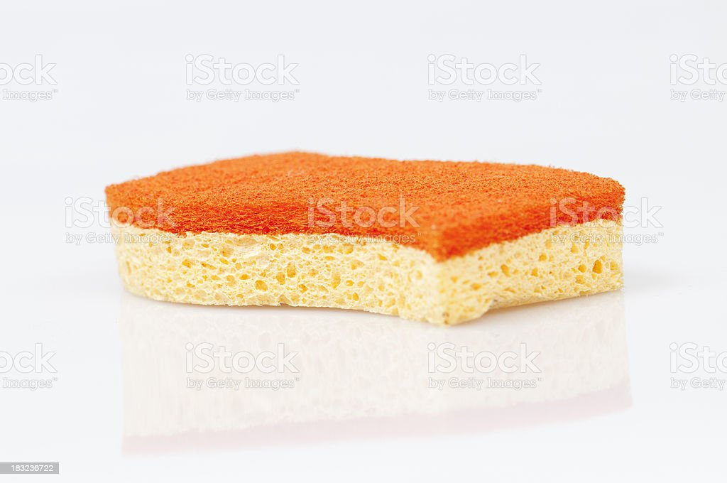 Isolated sponge royalty-free stock photo