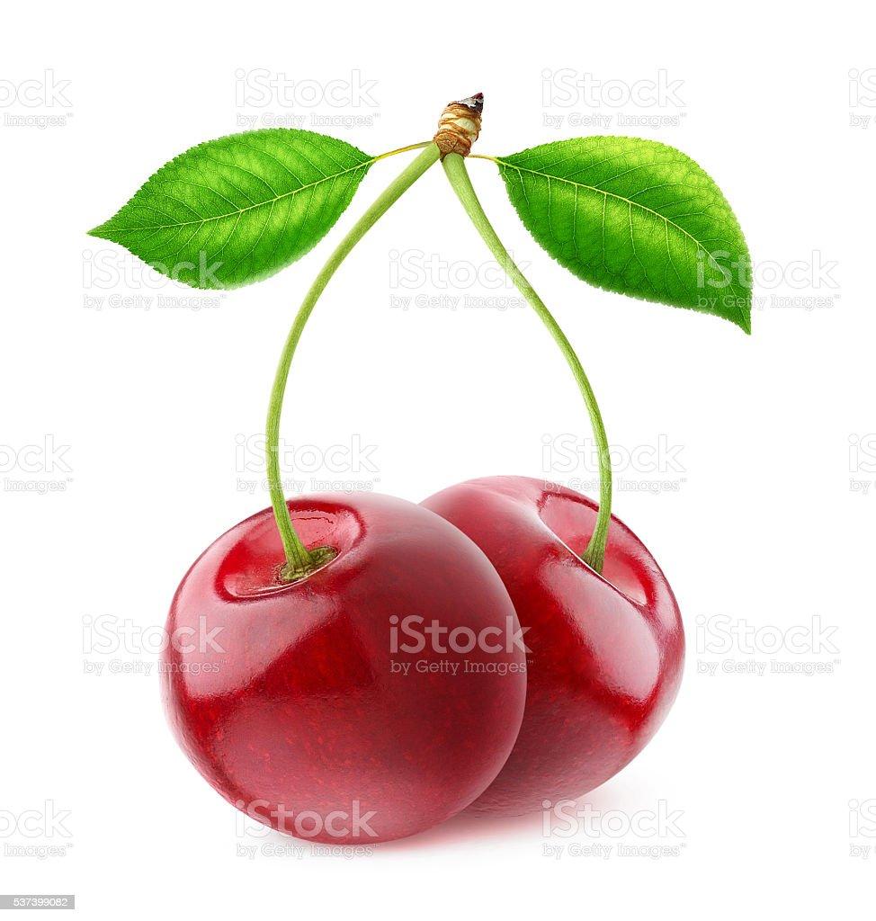 Isolated sweet cherries stock photo