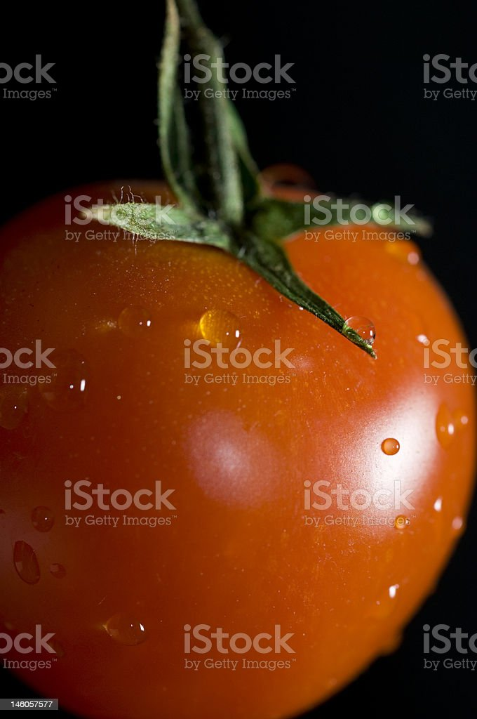isolated tomato detail royalty-free stock photo