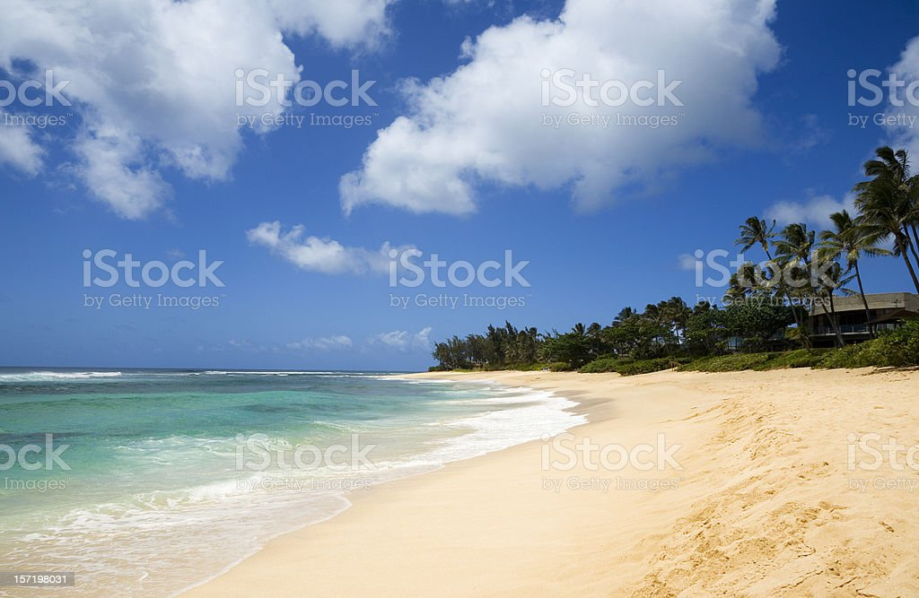 Isolated Tropical Beach royalty-free stock photo