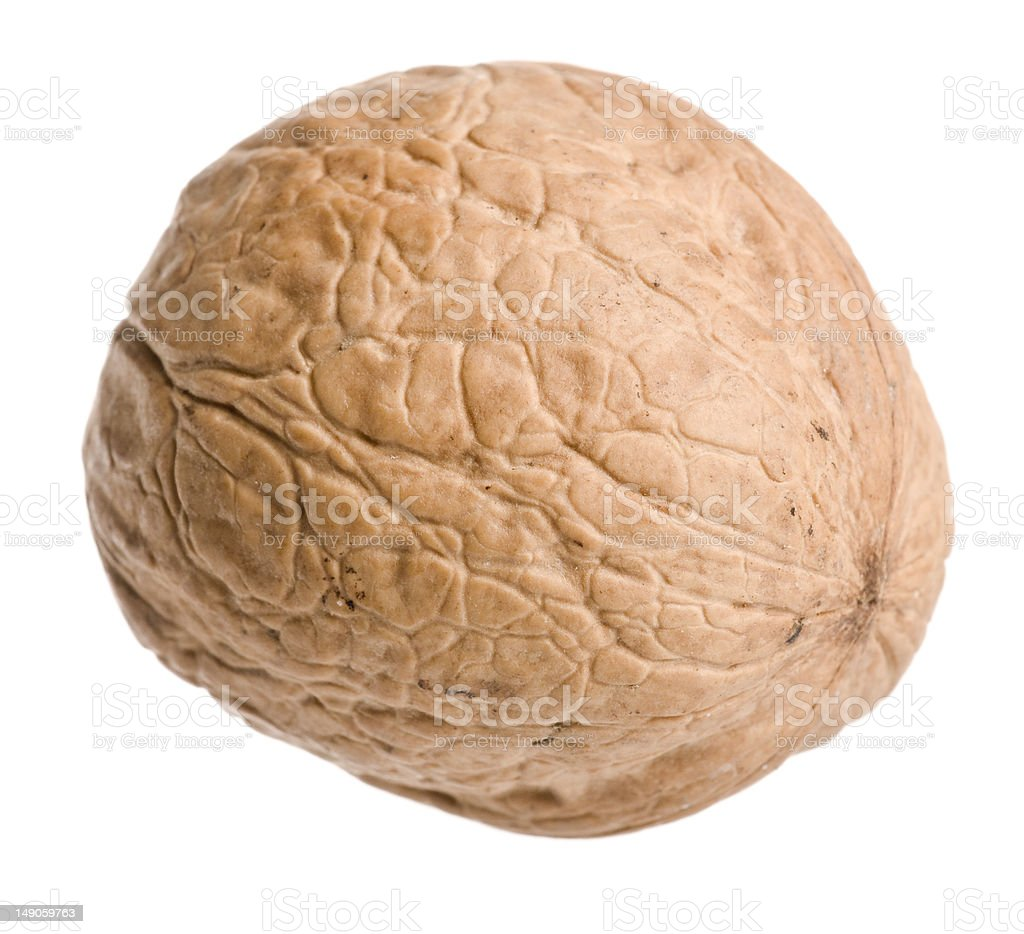 Isolated walnut royalty-free stock photo