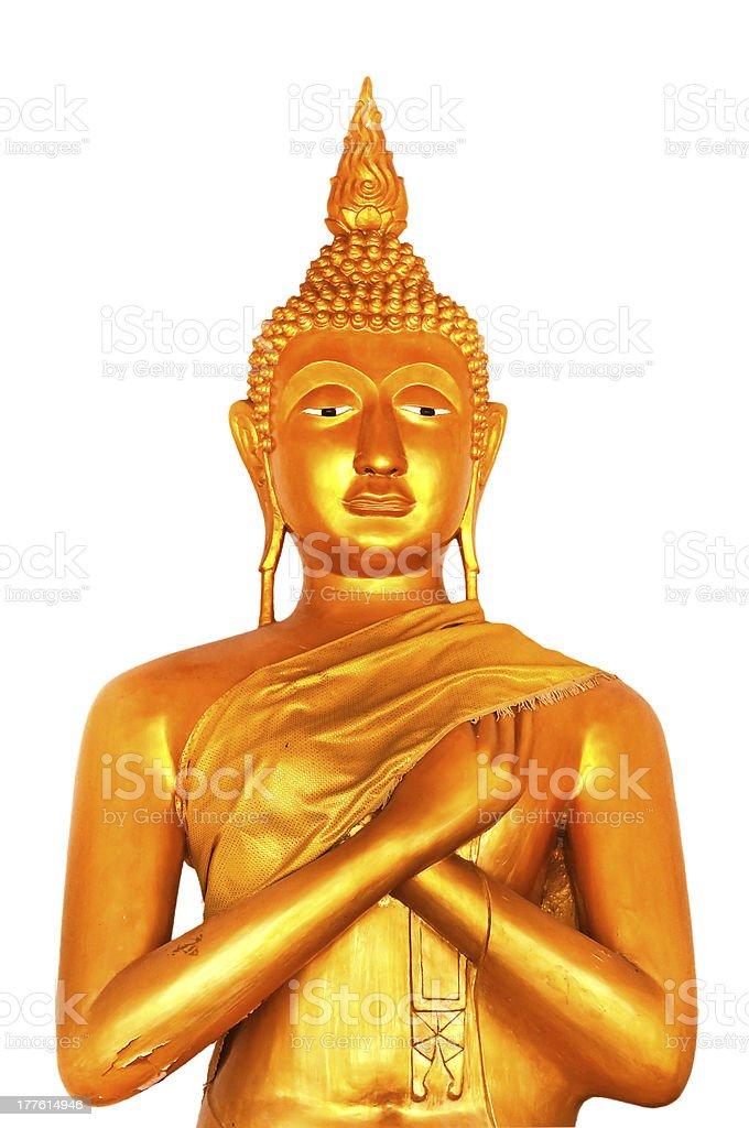 isolated white background golden buddha statue stock photo