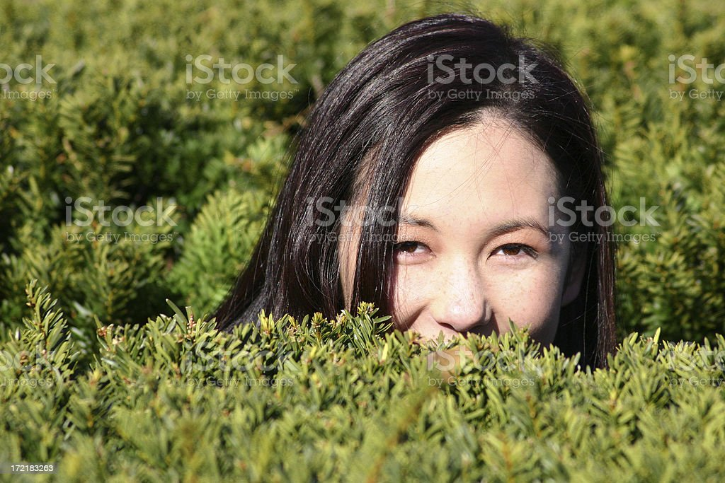 i-spy royalty-free stock photo