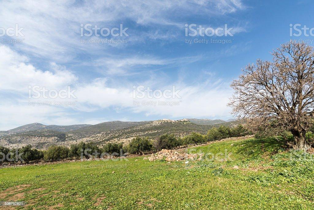 Israel. Galilee. Nimrod fortress royalty-free stock photo