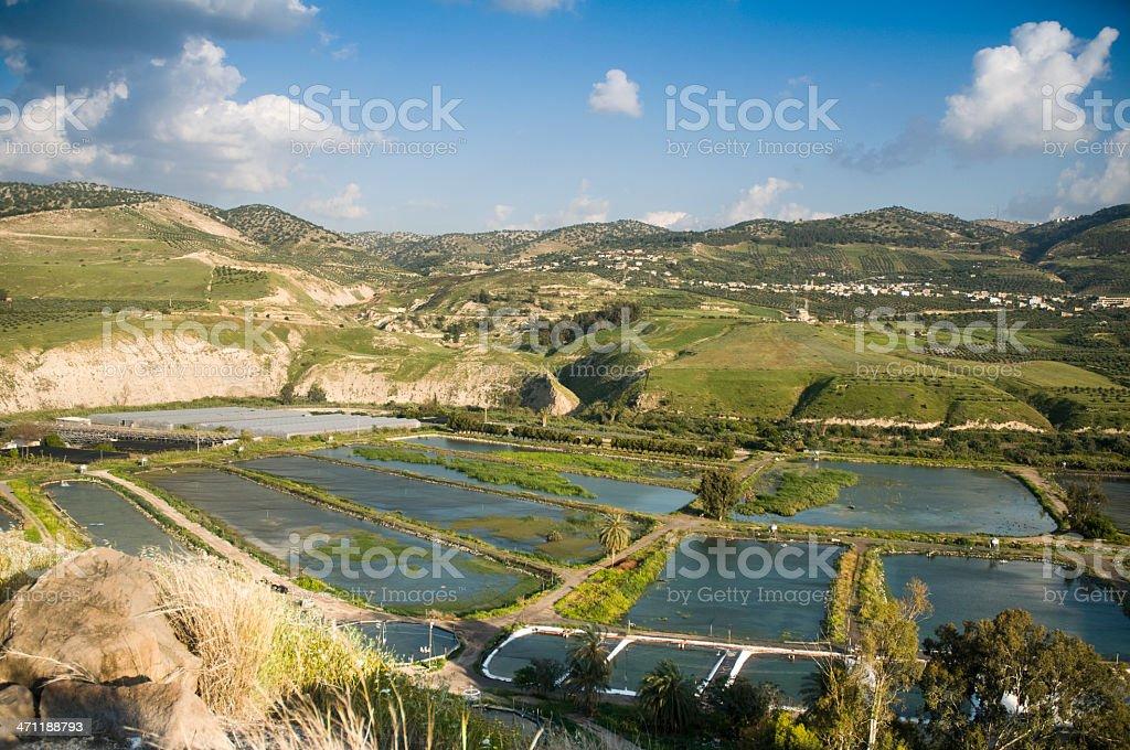 Israel, Jordan and Syria Border at el-Ḥamma stock photo
