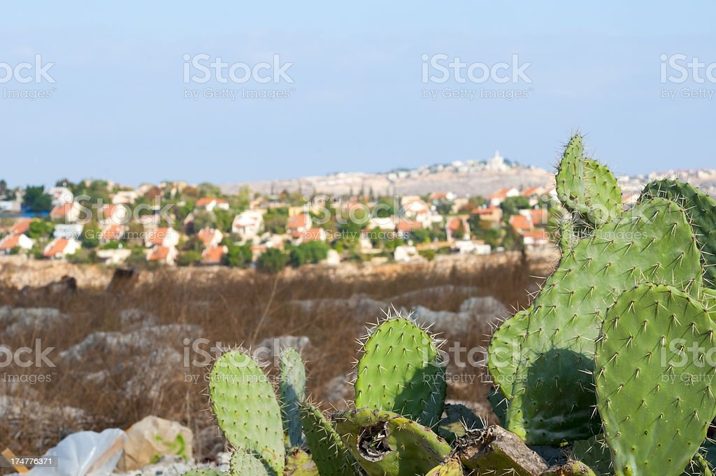 Israeli settlement of Beit Arye and cactus in West Bank stock photo