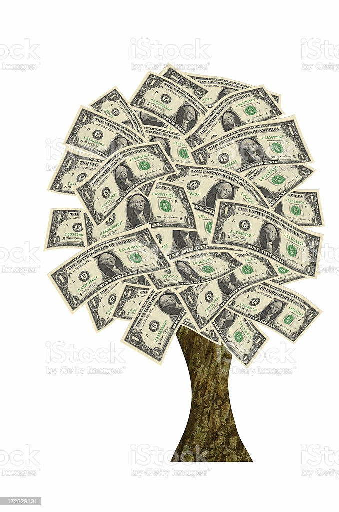 It doesn't grow on trees royalty-free stock photo