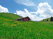 Italia, Dolomiti, Ortisei, baita tipica.
