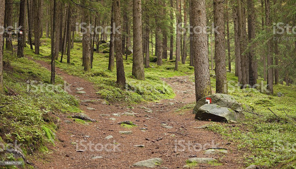 Italian alpine path royalty-free stock photo