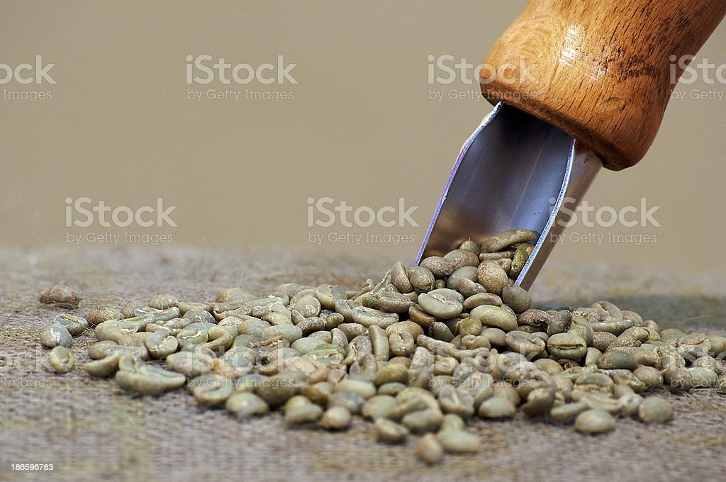 Italian Coffee Etiopia crudo royalty-free stock photo