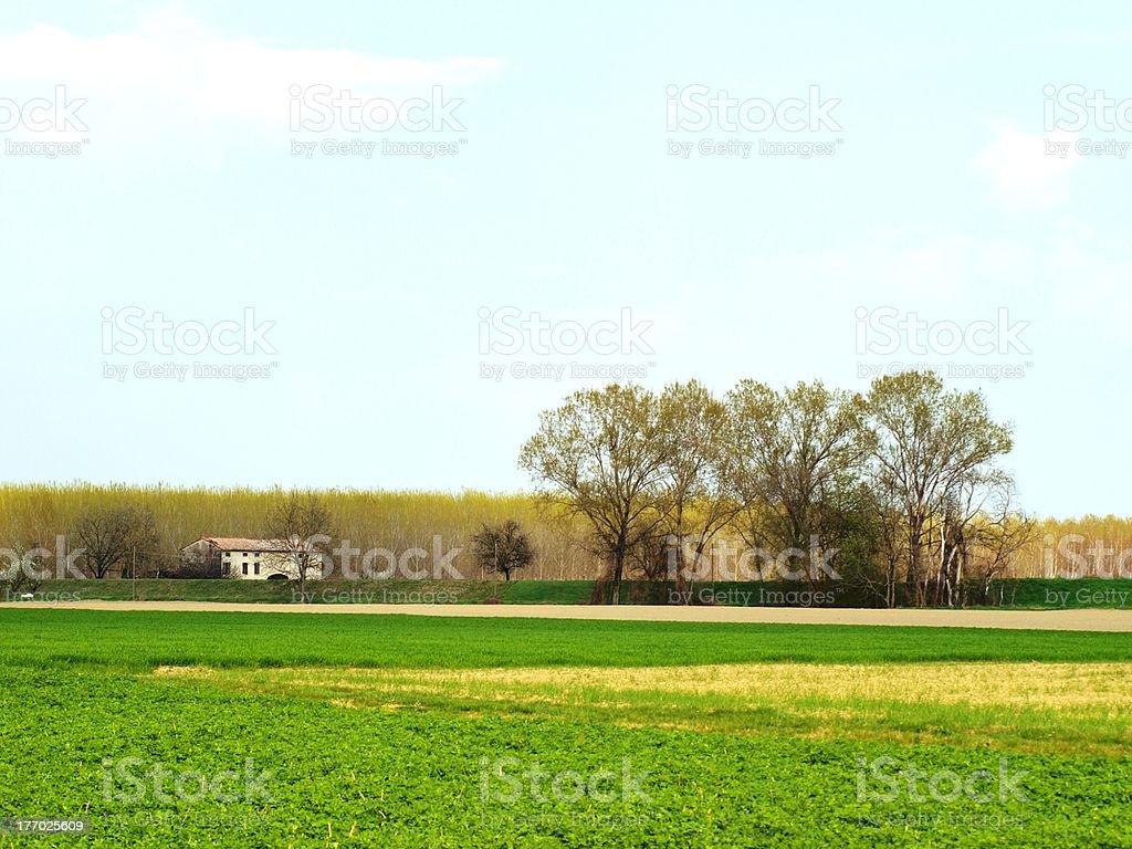 Итальянский сельской местности Стоковые фото Стоковая фотография
