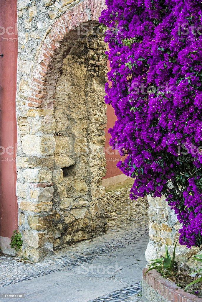 Italian doorway with purple flowers royalty-free stock photo