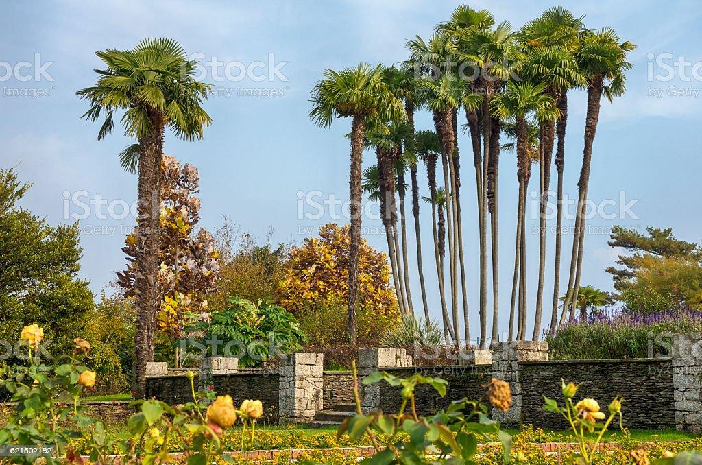 Italian garden in Autumn royalty-free stock photo