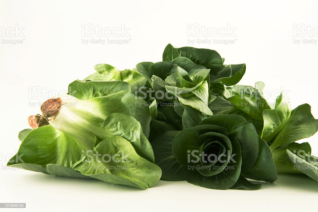 italian green radicchio royalty-free stock photo
