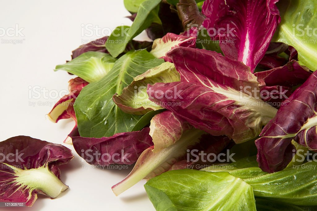 italian lettuce royalty-free stock photo