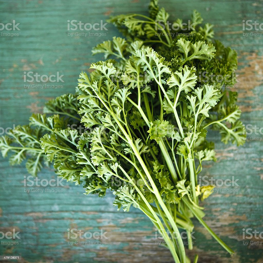 italian parsley royalty-free stock photo