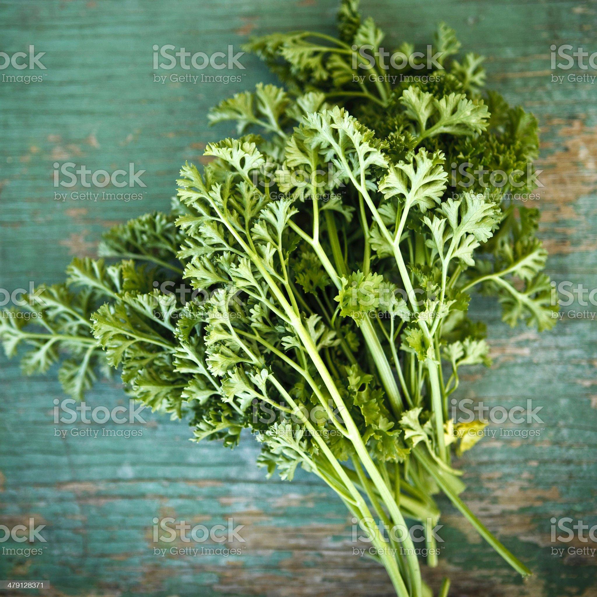 italian parsley royalty-free stock photo