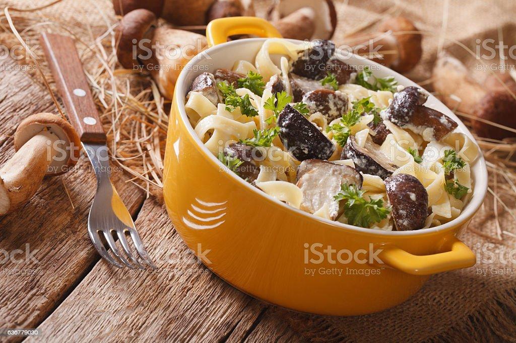 Italian pasta with porcini mushrooms and cream sauce close-up stock photo