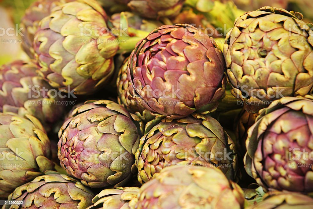 Italian Purple Artichoke Close-up stock photo