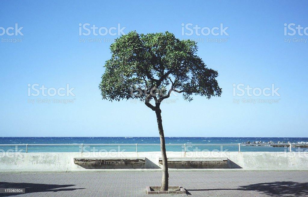 Italian Riviera royalty-free stock photo