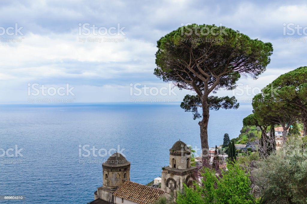 Italian Stone Pine Tree in front of Villa Rufolo with beautiful blue ocean view, Ravello, southern Italy stock photo