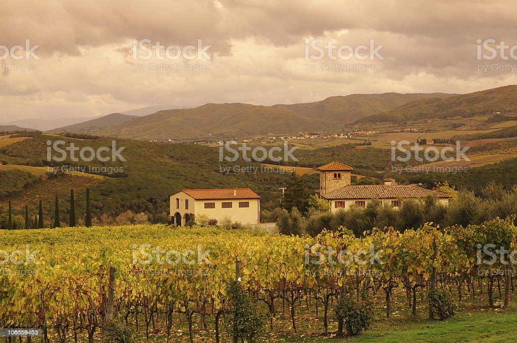 Italian Tuscany Culture Chianti Vineyards Fall stock photo