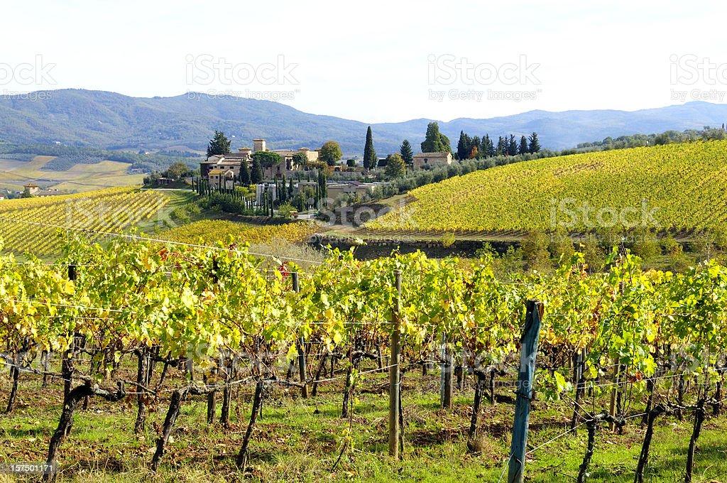 Italian Village and Vineyard in Fall royalty-free stock photo